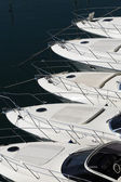 Bows of a row of luxury motorboats — Stock Photo