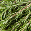 Stock Photo: Sprigs of fresh rosemary