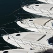 Bows of row of luxury motorboats — Stock Photo #40569297