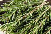 Sprigs of fresh rosemary — Stock Photo