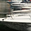 Bows of motorboats in a marina or harbor — Stock Photo #49747891