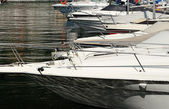 Bows of motorboats in a marina or harbor — Stock Photo