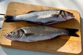 Two cleaned uncooked fresh bass — Stock Photo