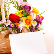 Beautiful flowers — Stock Photo #24609327