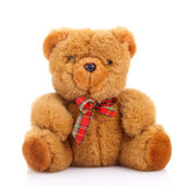 Toy teddy bear — 图库照片