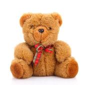Urso de pelúcia brinquedo — Foto Stock