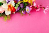 Fleurs avec place pour étiquette — Photo