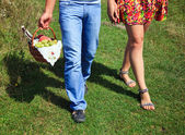 Couple going for a picnic — Stock Photo