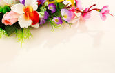 Composition of flowers — Stock Photo