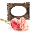 Intage frame with rose — Stock Photo