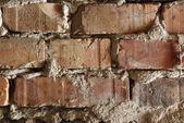 Texture de mur de brique — Photo
