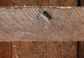 Texture of the wood planks — Foto Stock