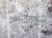 Beton doku — Stok fotoğraf