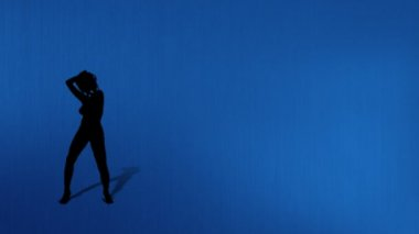 BlueLine03 naked sexy go go dancer background — Stock Video