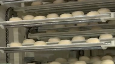 German bakery roll bun on conveyor belt elevator 10739 — Stock Video