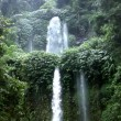 Two rain forrest waterfall tilt 10183 — Stock Video