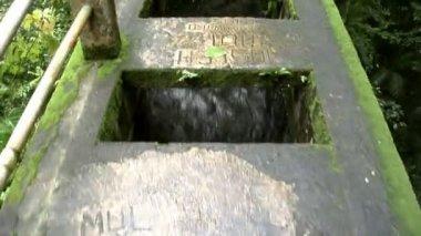 Walking water bridge aqueduct rain jungle A 10187 — Stock Video