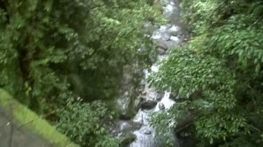 Walking water bridge aqueduct rain jungle B 10188 — Stock Video