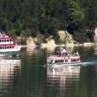 Steamer crossing 10318 - Stock Photo