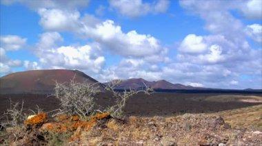 Living on dead vulcan moon area on Lanzarote 10480 — Stock Video
