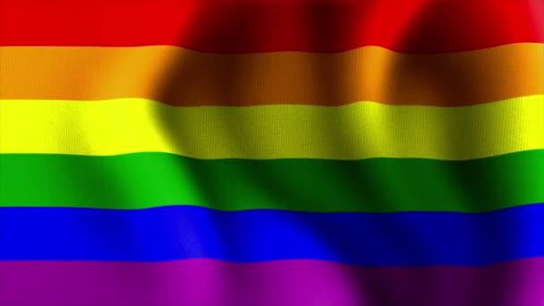 Ondeando la bandera del arco iris 10568 — Vídeo de stock