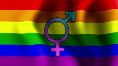 Waving rainbow flag bisexual 10594 — Stock Video