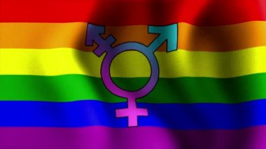 Waving rainbow flag transgender 10595 — Stock Video