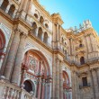 Malaga Cathedral 2 — Stock Photo #13609550