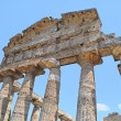 Stock Photo: Paestum Temple #11