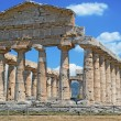 Foto Stock: Paestum Temple #8
