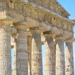 Foto Stock: Paestum Temple #10