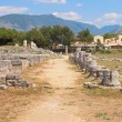 Paestum Details #7 — Stock Photo