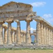 Stock Photo: Paestum Temple #1