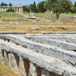 Stock Photo: Paestum Details #4