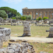 Stock Photo: Paestum Details #3