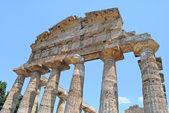 Paestum Temple #11 — Fotografia Stock