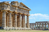 Paestum Temple #7 — Stock Photo