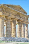 Paestum Temple #10 — Stock Photo