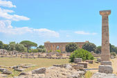 Paestum Temple #6 — Stock Photo