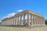 Paestum Temple #3 — Stock Photo