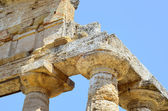 Paestum Details #5 — Stock Photo