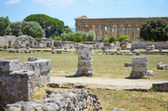 Paestum Details #3 — Stock Photo