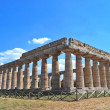 Paestum — Photo #15602071