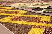 Floreal Decoration - Grand Place - Bruxelles — Stock Photo