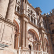 Malaga Cathedral 4 — Stock Photo #18779973