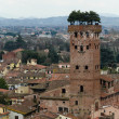 Aereal View Of Lucca - Italy - Stock Photo