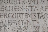 Latin Text - Texture Wall — Stock Photo