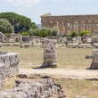 Acropolis of Paestum. Paestum is a Town in Campania, Italy — Stock Photo