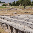 Acropolis of Paestum. Paestum is Town in Campania, Italy — Foto de stock #26860265