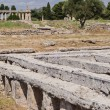 Foto Stock: Acropolis of Paestum. Paestum is Town in Campania, Italy